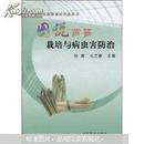 芦笋种植书籍 芦笋栽培图书 图说芦笋栽培与病虫害防治