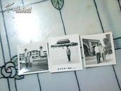 老照片(三张)79年