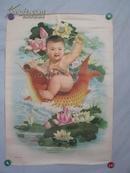 荷塘红鲤   年画一幅 75/53厘米 河南人民出版社 1979年
