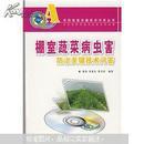 棚室蔬菜病虫害防治关键技术问答(附VCD光盘)