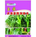2015新版玉米高产栽培技术,玉米种植技术视频,玉米病虫害防治