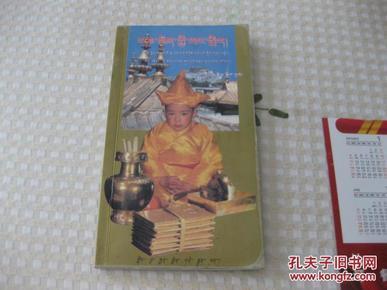 班禅转世:第十一世班禅寻访、认定、坐床纪实(藏文图书)