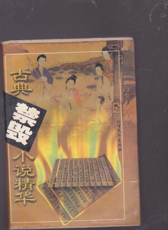 古典禁毁小说精华