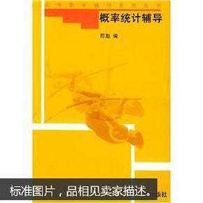 概率统计辅导/大学数学辅导系列丛书
