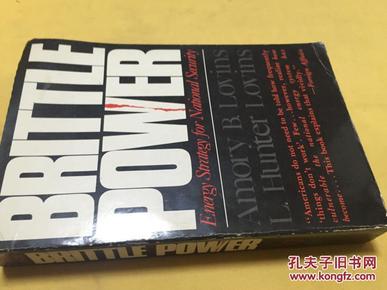 英文原版     Brittle Power