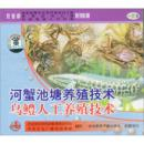 养黑鱼书 乌鳢实用养殖技术 乌鳢人工养殖技术(VCD)1光盘+1书