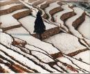 【1551353】【摄影作品专场】参赛作品照片 冬韵 自然风光类  拍摄时间2010年前后