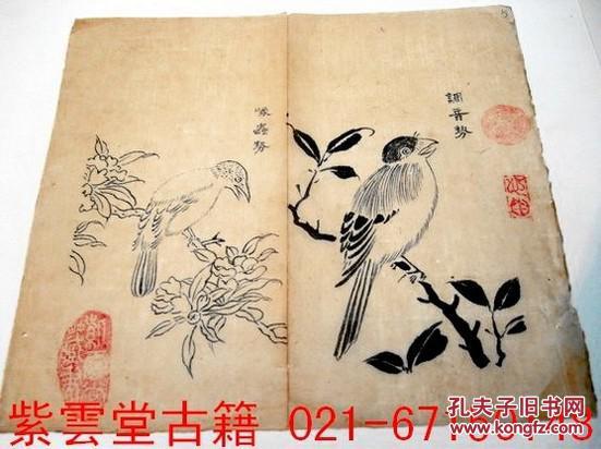 明;芥子园画谱(调音鸟)原始祖本.墨勾手稿 #3730