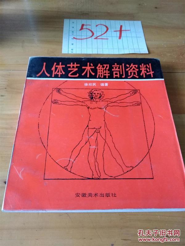 人体艺术解剖资料