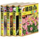 正版 植物百科彩色图鉴 精装4册 定价699元 学生必看课外读物图书知识性趣味性
