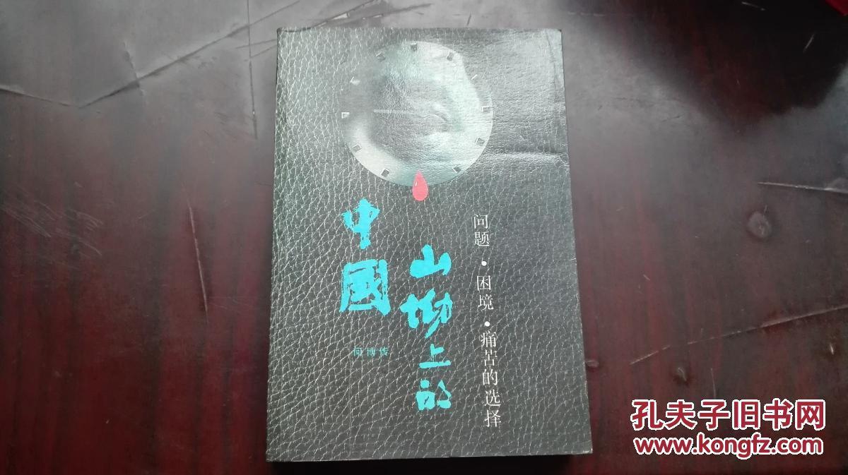 【山坳上的中国】——问题、困境、痛苦的抉择