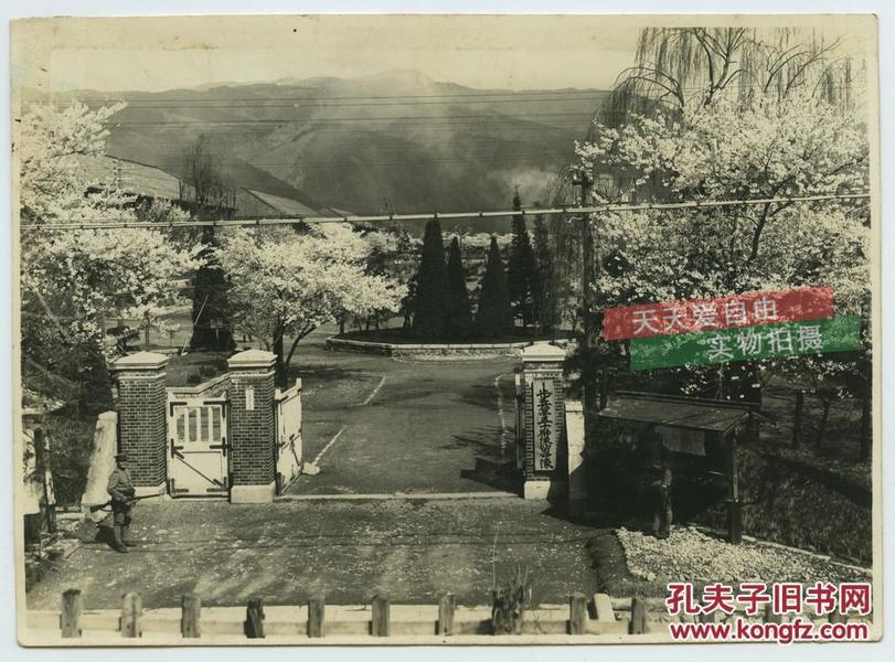 民国日军步兵第五十联队留守队营地老照片,樱花盛开,15.5X11.2厘米,泛银