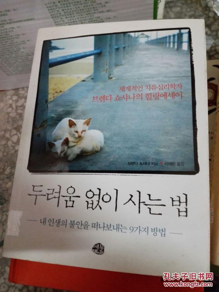 《不害怕的生活》두려움 없이 사는 법 韩语原版心理学哲学/BT