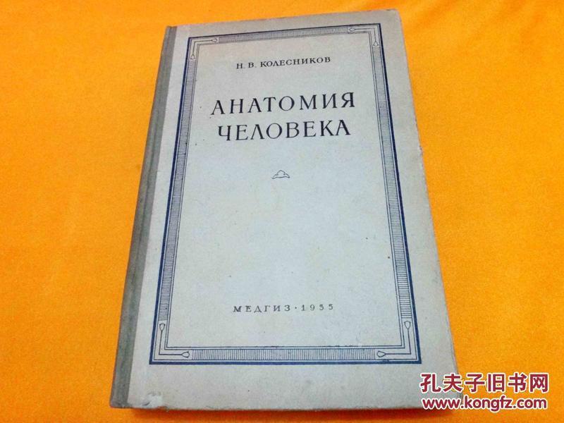 人体解剖学  俄文原版  插图版  精装    1955年     请看图