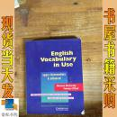 英文原版 English Vocabulary in Use  使用英语词汇