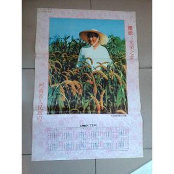 毛主席在河南农村视察年历画