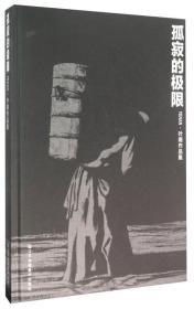 孤寂的极限:叶南作品集