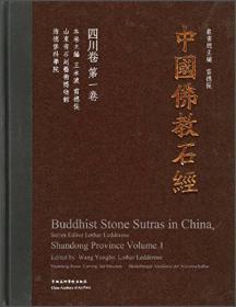中国佛教石经:四川省(第一卷)