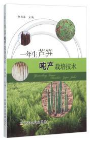一年生芦笋吨产栽培技术 李书华