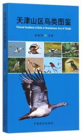 天津山区鸟类图鉴