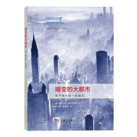 嬗变的大都市——关于城市的一些观念
