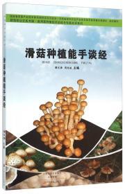 滑菇种植能手谈经
