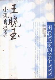 王晓玉小说自选集:田教授家的28个XXX