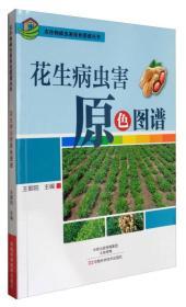 农作物病虫害原色图谱丛书:花生病虫害原色图谱