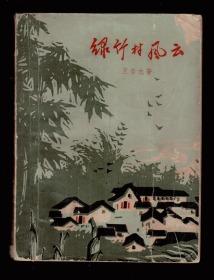 十七年小说《绿竹村风云》65年一版一印