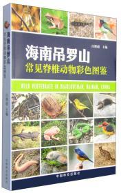 海南吊罗山常见脊椎动物彩色图鉴