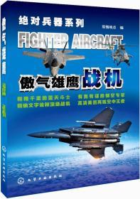 绝对兵器系列:傲气雄鹰·战机