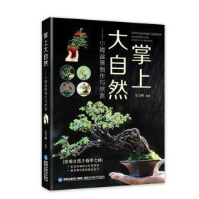 掌上大自然:小微盆景制作与欣赏