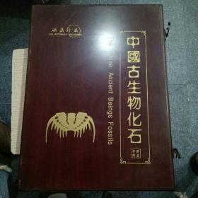 中国生物化石  精品典藏