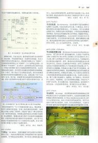 国防科技名词大典:核能