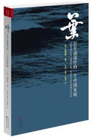 正版 叶:百年动荡中的一个中国家庭