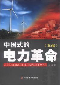 中国式的电力革命