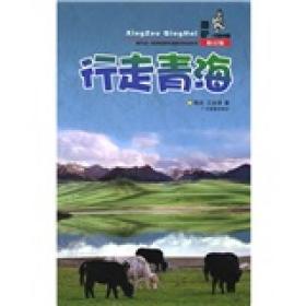 酷驴行走中国:行走青海