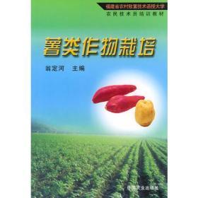 薯类作物栽培