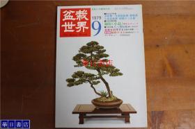 盆栽世界  1979年9月  第113号  小品盆栽站  黑松等    绝版 品好包邮