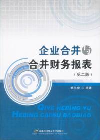 企业合并与合并财务报表(第二版)