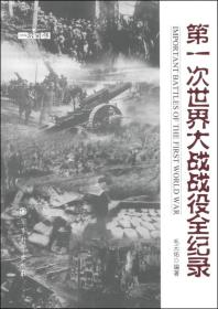 """""""一战百年""""系列丛书:第一次世界大战战役帅全纪录"""