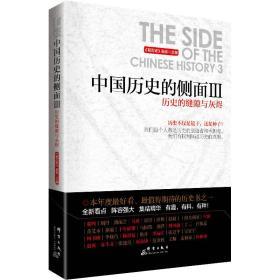 中国历史的侧面3:历史的缝隙与灰烬