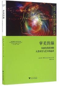 审美的脑:从演化角度阐释人类对美与艺术的追求 神经科学与社会丛书