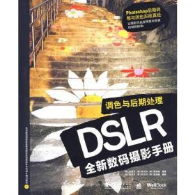 DSLR全新数码摄影手册:调色与后期处理