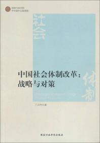 中国社会体制改革战略与对策 专著 丁元竹著 zhong guo she hui ti zhi gai ge zhan lue