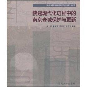 快速现代化进程中的南京老城保护与更新