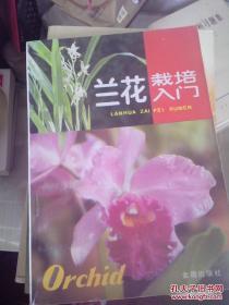 兰花栽培入门