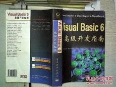 Visual Basic 6高级开发指南