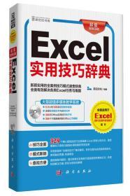 Excel实用技巧辞典