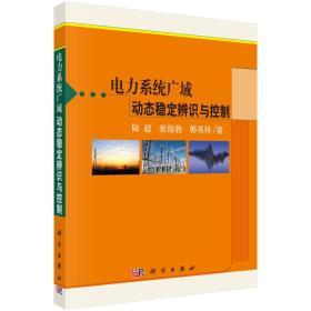 电力系统广域动态稳定辨识与控制